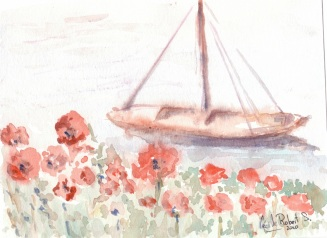 coquelicots en bord de Loire