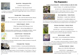 programme Bulles et légèreté 2017 p3
